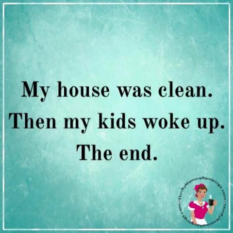 cleanhouse.jpg