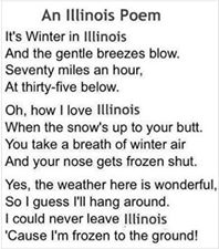 illinois winter.jpg