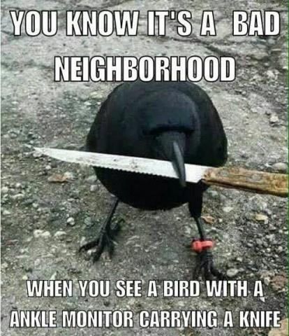 badneighborhood.jpg